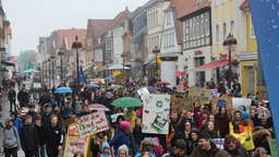 #FridaysforFuture-Demo in der Nienburger Innenstadt